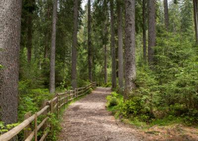 Wanderweg um den Karersee